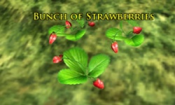 Bunch of Strawberries.jpg