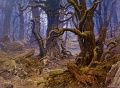 Ted Nasmith - Fangorn Forest.jpg