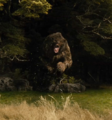 The Hobbit - The Desolation of Smaug - Beorn as a bear.png