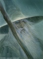 John Howe - Gandalf the Grey.jpg