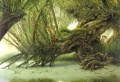 John Howe - Old Man Willow 01.jpg