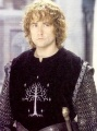 The Lord of the Rings - The Motion Picture Trilogy - Pippin.jpg