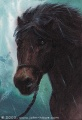 John Howe - Bill the Pony.jpg