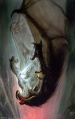 John Howe - Gandalf Falls with the Balrog.jpg